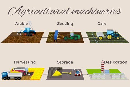Illustration of the process of growing and harvesting crops. Infographics from 6 items: arable, seeding, care, harvesting, storege, desiccation. Illustration