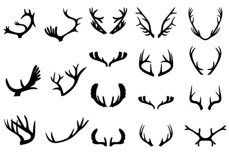 horny: Collection of deer horns. Isolated on white background Illustration
