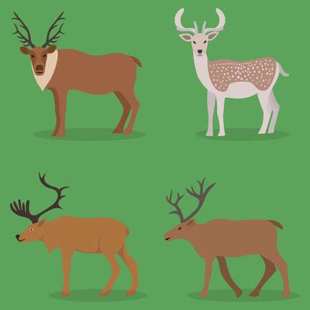 Collection of deer in a flat design - isolated on green background