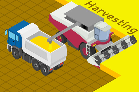 Combine harvester collect wheat in the field. Equipment for agriculture. Loads in the truck - Isometricc illustration.