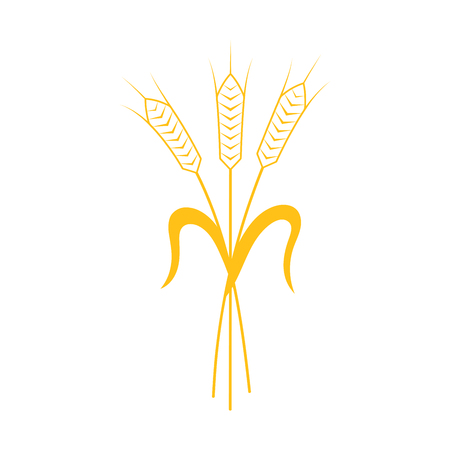 rye: Ears of Wheat, Barley or Rye vector visual graphic icons, ideal for bread packaging, beer labels etc