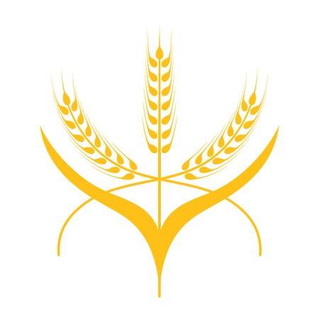 shape silhouette: Ears of Wheat, Barley or Rye vector visual graphic icons, ideal for bread packaging, beer labels etc