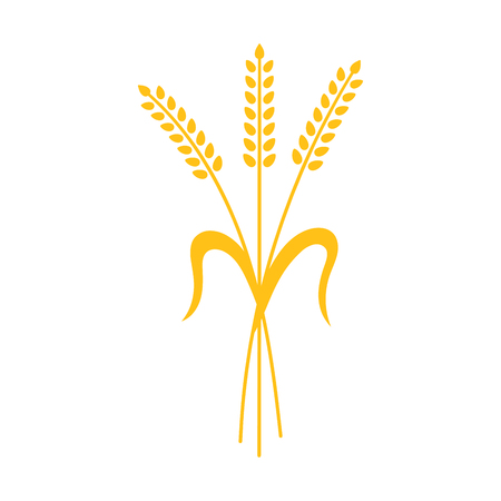Ears of Wheat, Barley or Rye vector visual graphic icons, ideal for bread packaging, beer labels etc