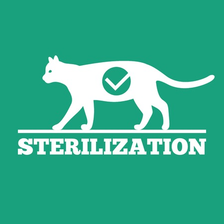 去勢と猫の滅菌のベクトルのロゴ