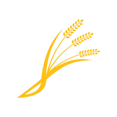 sheaf: Concept for organic products label, harvest and farming, grain, bakery, healthy food. Simple wheats ears icons and wheat design elements, organic wheats local farm fresh food, bakery.