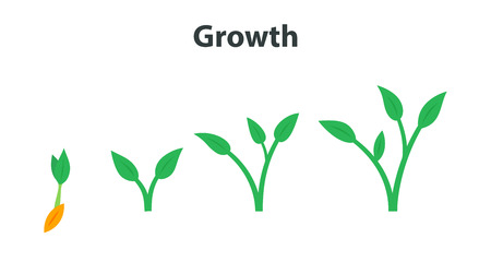 The process of growing plants. Stages and timeline infographic of planting tree.