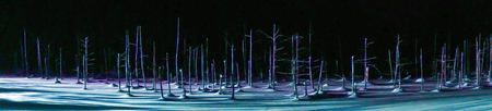 Panorama landscape.  Blue pond illumination light up in winter night at Biei in Hokkaido, Japan. During the winter when the pond is frozen, it is lighting up at night