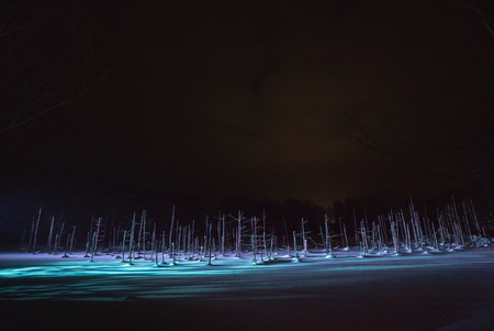 Blue pond illumination light up in winter night at Biei in Hokkaido, Japan. During the winter when the pond is frozen, it is lighting up at night