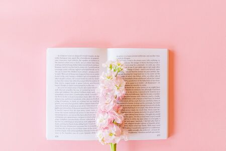 Top view of open book and Pink Matthiola incana or Mathilda Lavender on pastel pink background with copy space.
