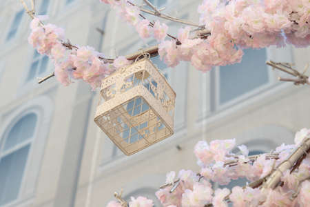 White decoraretive bird cage hanging on branch of blooming apple tree on building background. Spring city decoration