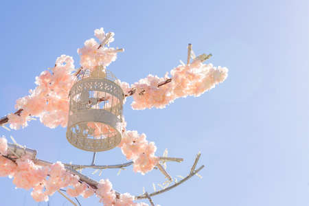 White decorative bird cage hanging on branch of blooming apple tree on sky background. Spring city decoration Imagens