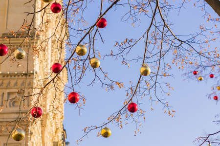 Christmas and New Year holidays background. tree without leaves decorated with red and gold balls