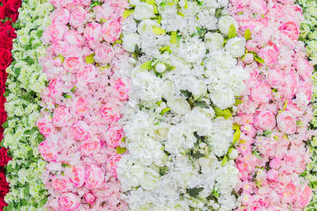 artificial blooming peonies and roses of white, red and pink color background