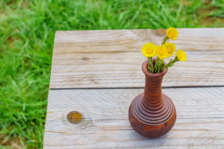 Freshly cut yellow coltsfoot flowers in clay vase on wooden table outdoors. Rustic style.