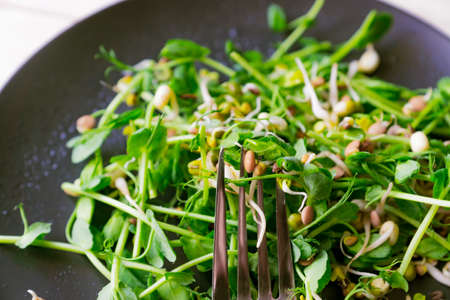 vegan healthy salad made of peas microgreen sprouts and sprouted beans on wooden background. Foto de archivo