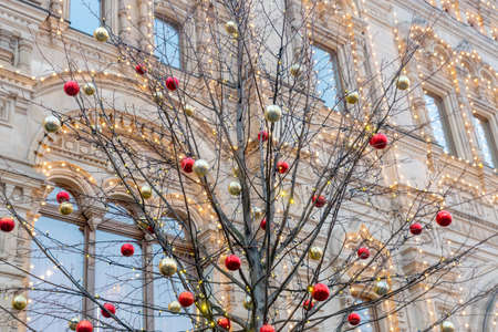 Christmas and New Year holidays background. tree without leaves decorated with red and gold balls. Banque d'images