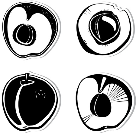 Set of vector decorative apricots. Black and white vector decorative illustration for graphic design  Illustration