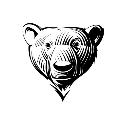 Head bear. Illustration in the engraving manner. Picture can be used for symbols and labels design, and also for print on t-shirts.  Illustration