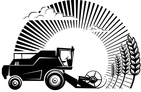 Combine harvester on a wheat field against sun. Vector illustration in the engraving style. Picture can be used for design labels and package.  Vector