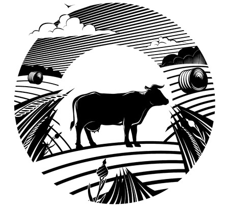 Rural landscape with cow stands on field under cloudy sky. Vector illustration in the engraving manner. Picture can be used for design labels.  Vector