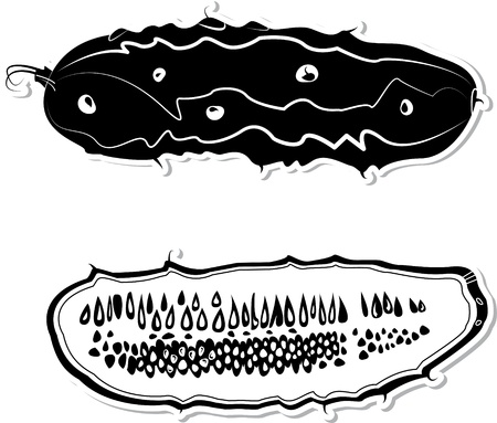 Vector decorative cucumber. Black and white vector decorative illustration for graphic design
