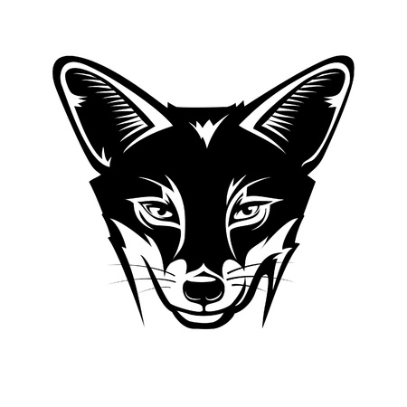 sly: Fox head.illustration in the engraving manner. Picture can be used for symbols and labels design, and also for print on t-shirts. Illustration