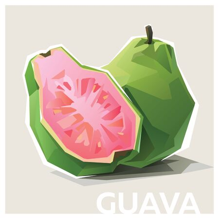 Guava low poly illustration