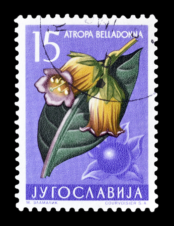 philately: Cancelled postage stamp printed by Yugoslavia, that shows Belladonna flower, circa 1957. Editorial
