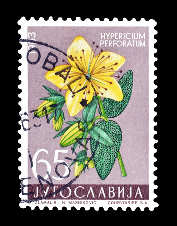 post stamp: Cancelled postage stamp printed by Yugoslavia, that shows St Johns wort flower, circa 1963.