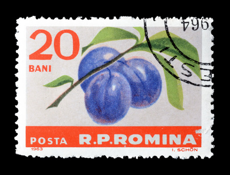 postage: Cancelled postage stamp printed by Romania, that shows plums, circa 1963.