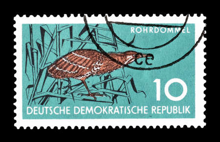 democratic: Cancelled postage stamp printed by German Democratic Republic, that shows Great bittern, circa 1959. Editorial