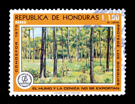 philately: Cancelled postage stamp printed by Honduras, that shows forest, circa 1975. Editorial