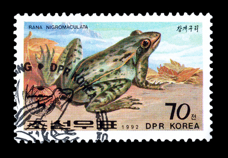philately: Cancelled postage stamp printed by North Korea, that shows Frog, circa 1992. Editorial