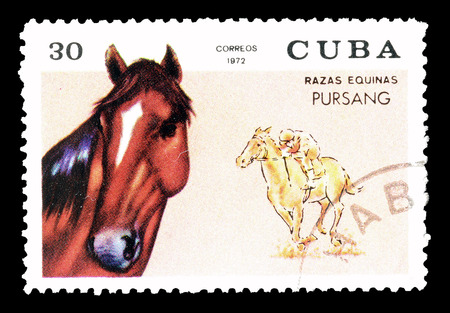 philately: Cancelled postage stamp printed by Cuba, that shows Pur Sang horse, circa 1972.