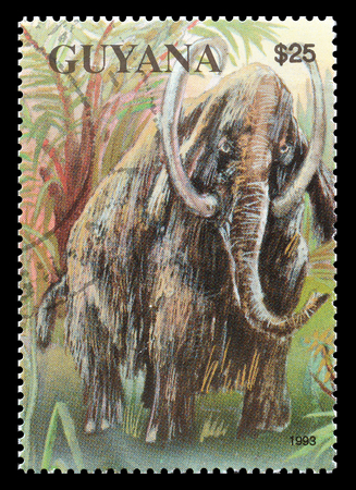 mammoth: Cancelled postage stamp printed by Guyana, that shows Mammoth, circa 1993.