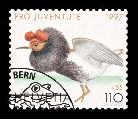 ruff: Cancelled postage stamp printed by Switzerland, that shows Ruff, circa 1997.