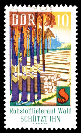 democratic: Cancelled postage stamp printed by German Democratic Republic, that shows forest, circa 1969.