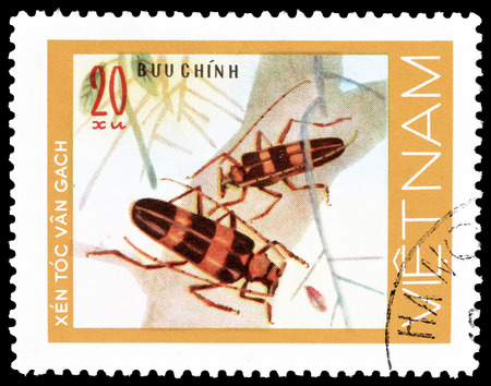 postage: Cancelled postage stamp printed by Vietnam, that shows Beetles, circa 1977.