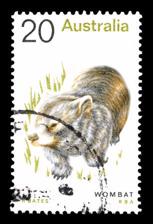 wombat: Cancelled postage stamp printed by Australia, that shows Wombat, circa 1974.