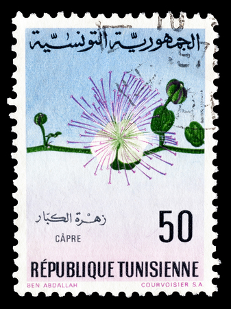 caper: Cancelled postage stamp printed by Tunisia, that shows Caper, circa 1968. Editorial