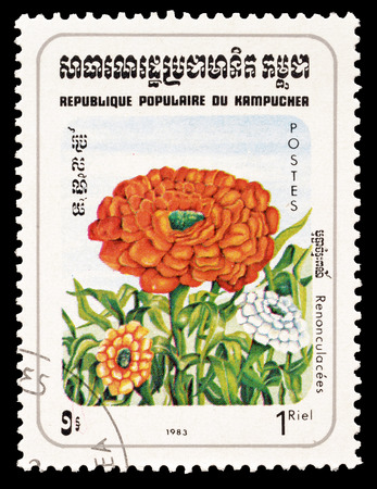 buttercup flower: Cancelled postage stamp printed by Cambodia, that shows Buttercup flower, circa 1983. Editorial