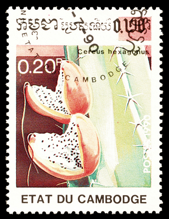 Cancelled postage stamp printed by Cambodia, that shows Cereus Hexagonus cactus, circa 1990.