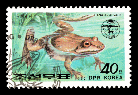 Cancelled postage stamp printed by North Korea, that shows Moor frog, circa 1992.