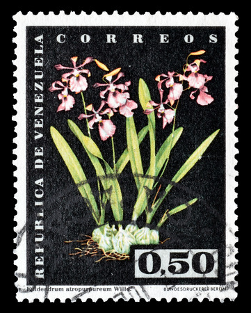 philately: Cancelled postage stamp printed by Venezuela, that shows Flowers, circa 1962. Editorial