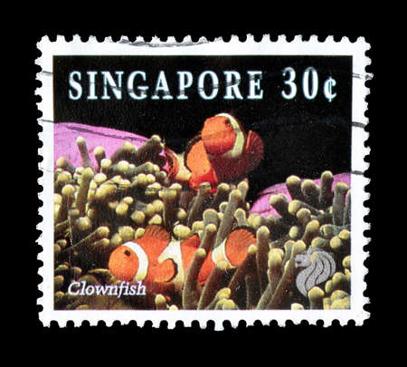 timbre postal: Cancelled postage stamp printed by Singapore, that shows Clown fish, circa 1994. Editorial
