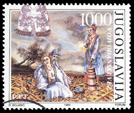 postage: Cancelled postage stamp printed by Yugoslavia, that shows Traditional costume, circa 1988.