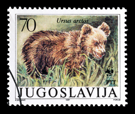 yugoslavia: Cancelled postage stamp printed by Yugoslavia, that shows Brown Bear, circa 1987.