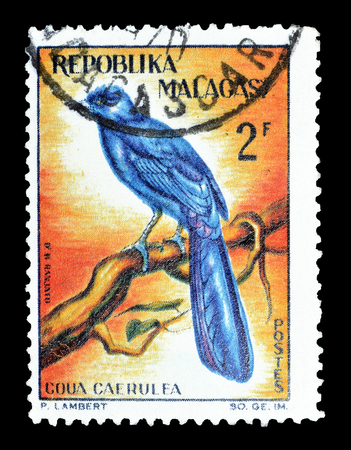 Cancelled postage stamp printed by Madagascar, that shows Blue Coua, circa 1963.