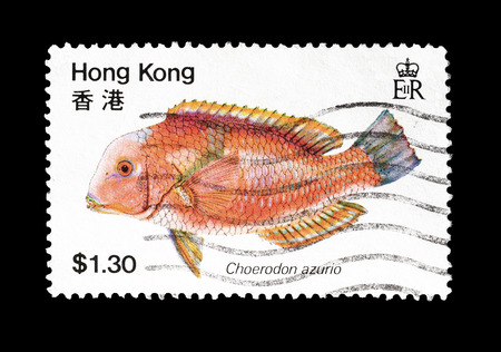 Cancelled postage stamp printed by Hong Kong, that shows Choerodon azurio, circa 1981.