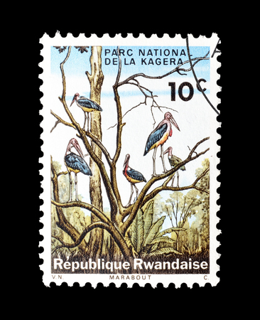 Cancelled postage stamp printed by Rwanda, that shows Marabous at Kagera National Park, circa 1965. Editorial